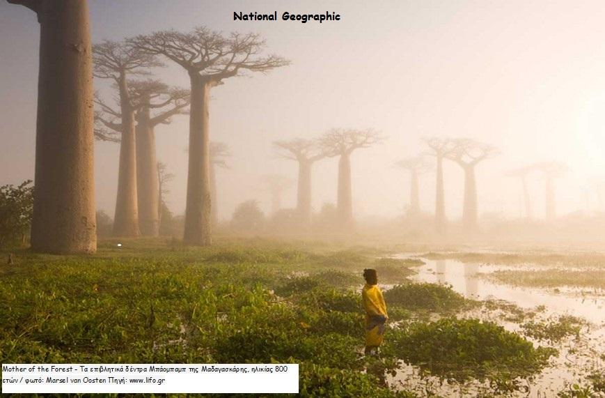 2015 Φωτογραφία από το National Geographic