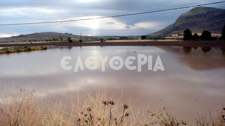 2016 Πλημμύρες στη Θεσσαλία - Ενιπέας Φαρσάλων